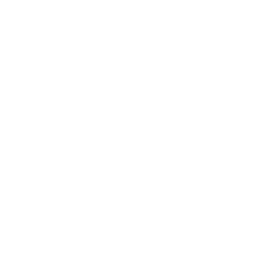 Icon of braces as part of our Kiddo Expert services